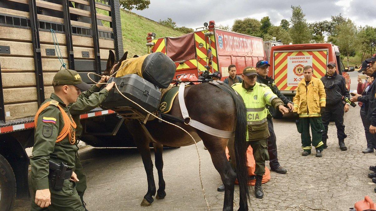 #AEstaHora junto a @CarabinerosCol realizamos un simulacro de rescate de una persona extraviada en los Cerros Orientales, haciendo el transporte de herramienta y equipos en mulas 🚒👩🏻🚒👮🏻♂️ con esto afianzamos nuestras relaciones interinstitucionales, en beneficio de la ciudad 👏🏻