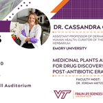 #DYK: Around 28,000 plants are currently being used in traditional medicine?🌱💊  This week's VTLSS speaker is Dr. Cassandra Quave, an assistant professor at @EmoryUniversity and curator of the @EmoryHerbarium. Her talk will focus on medicinal plants & antibiotic drug discovery!