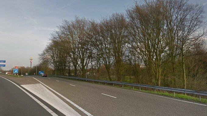 Bomenkap voor verbreding A20 bij Vlaardingen https://t.co/TEiy5MspFt https://t.co/VsOF8T65cH