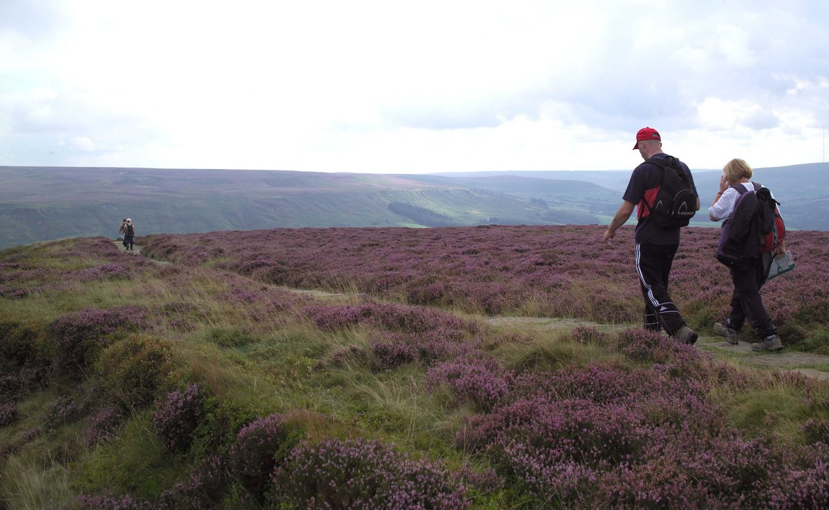 From short walks to long treks #NorthYorkshire has something for everyone. Get some ideas on routes here ⬇️