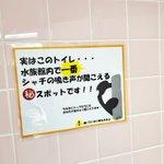 トイレが大人気になる?名古屋港水族館のトイレはシャチの鳴き声が一番よく聞こえる!