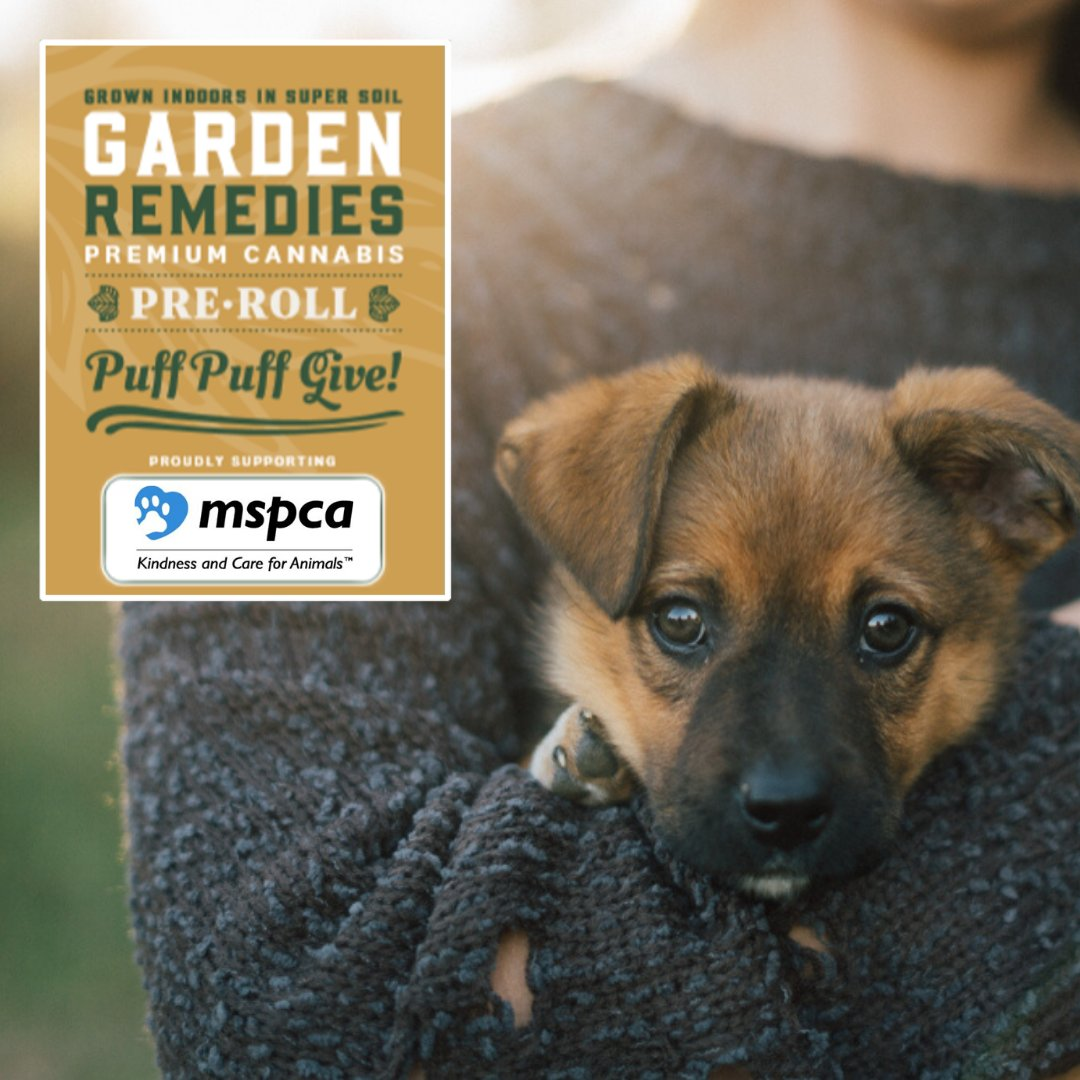 Garden Remedies Gardenremedies Twitter