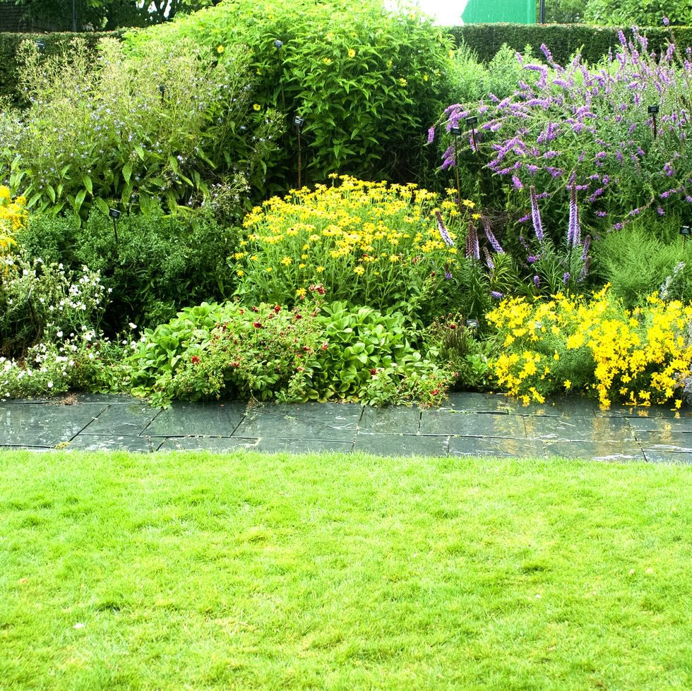 Could rain gardens assist in the climate change battle and why these four plants deserve a place in your front garden>> #gardening https://twitter.com/countrylivinguk/status/1230096273082109952…pic.twitter.com/dutAruHAts