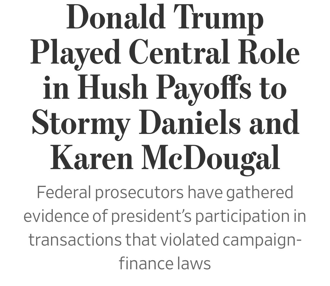 @realDonaldTrump You paid off Stormy and Karen and it was a campaign violation