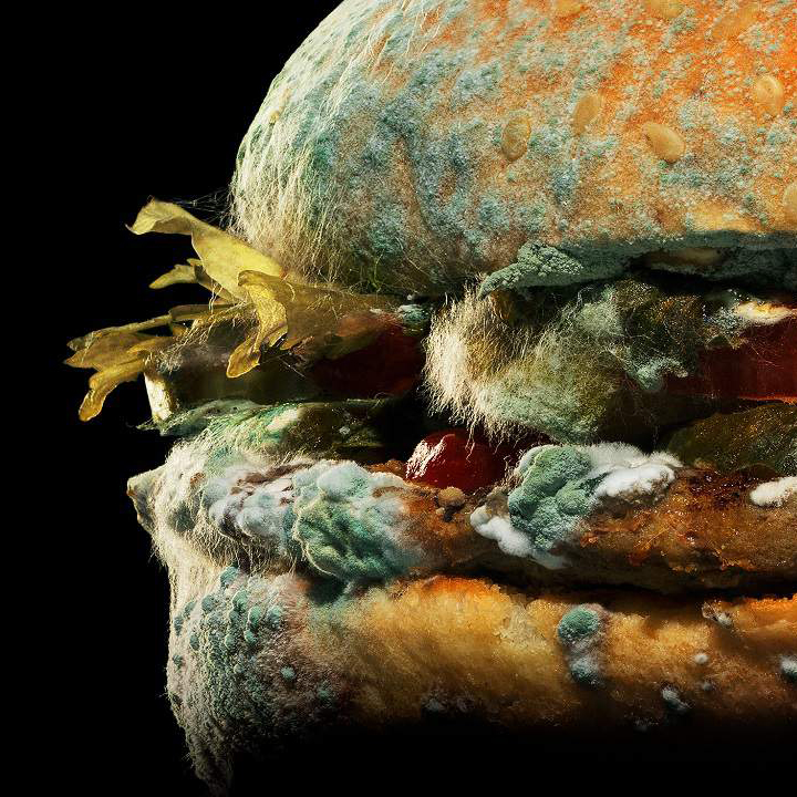 """See why Burger King is re-""""molding"""" the image of its signature Whopper in a nauseating new ad. >  #KPRC2"""