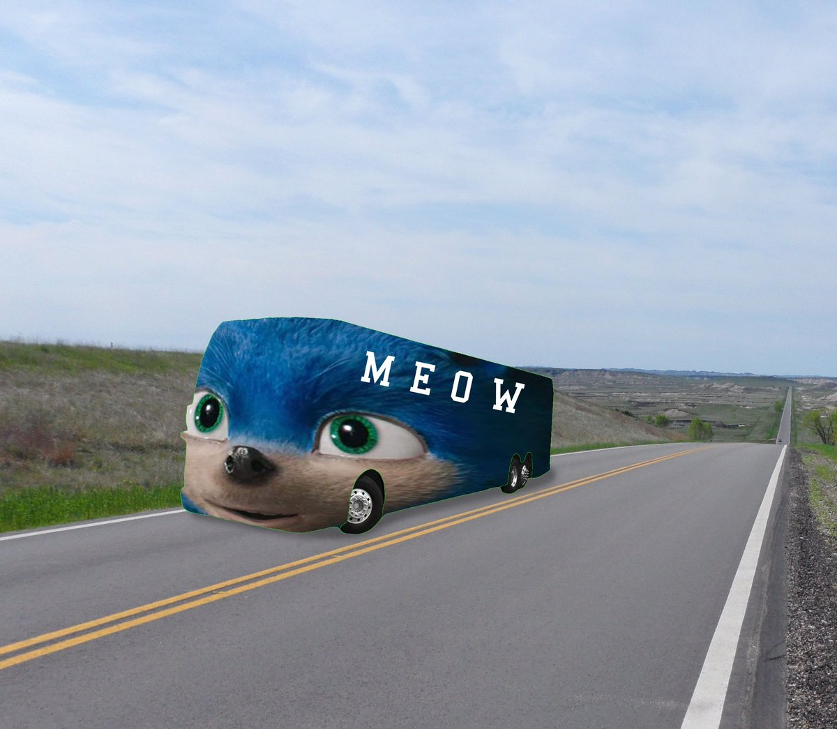 Meow #YIAYbus <br>http://pic.twitter.com/kIOphKhoiN