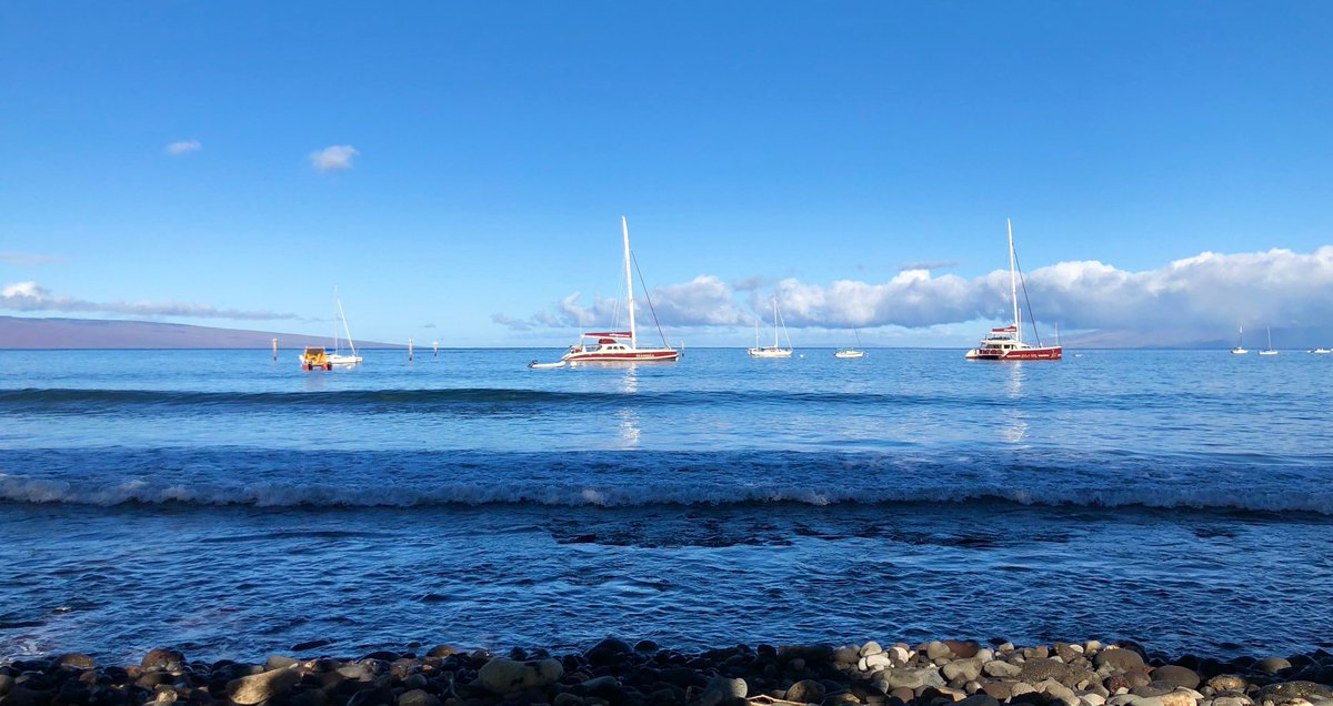 Our kind of midweek blues  #lahaina #maui<br>http://pic.twitter.com/CewfLPfOJQ