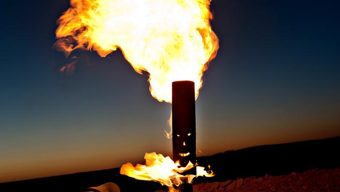 Crude Oil Up as Risk Appetite Recovers, Production Cut Hopes Help http://dlvr.it/RQM3F4pic.twitter.com/vejWhx2UBF