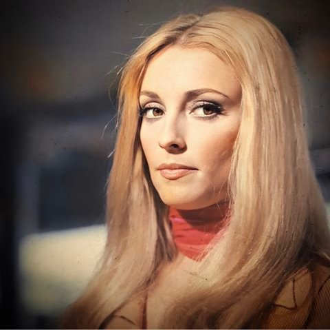 "#SharonTate photographed by #ClaudioMasenza on the set of ""#12Plus1"" in Italy, 1969.  #sixties #cinema #hollywood #the13chairs #thethirteenchairspic.twitter.com/9AV68y8cF5"