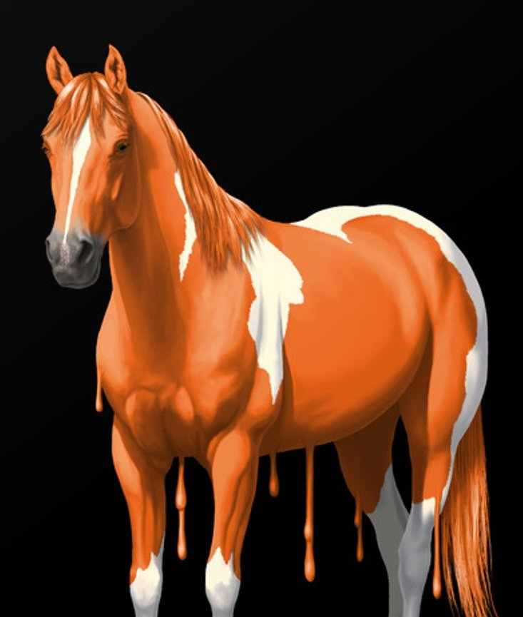 Damn mrhorse, you got some uranium poisoning going on. You gotta stop making #NorthKorea:n nuclear bombs. Just look at you, your skin is orange from all the exposure to uranium. Let's hope mrhorse stops with all the #NorthKorean funny buisness. --Daily Horse Pic, Day 45<br>http://pic.twitter.com/sQevvkYmdB
