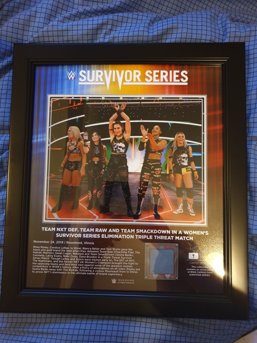 That time when @tonistorm_ @shirai_io @RheaRipley_WWE @BiancaBelairWWE and @CandiceLeRae proved that  @WWENXT is the superior brand. 🤟 #NXT #SurvivorSeries