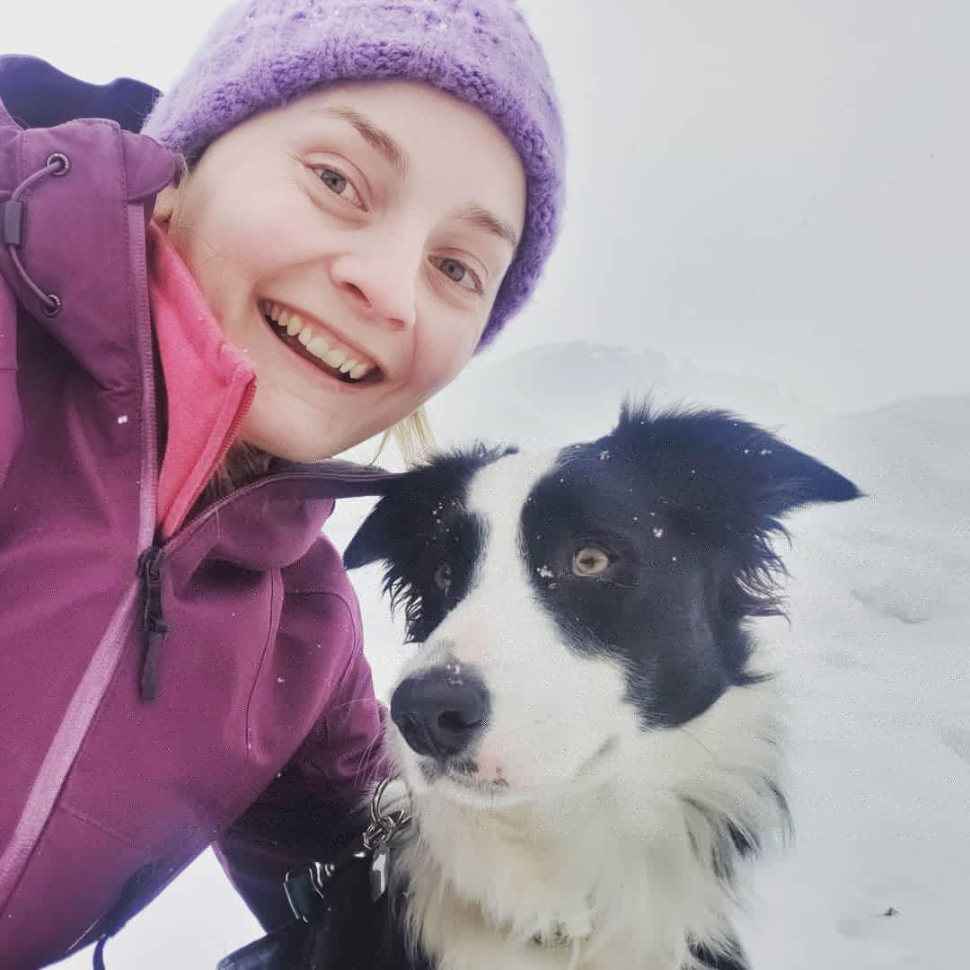 "Got to meet Winnie's #halfsister ""Steller"" aka ""Stella"" today  She's SO sweet #dog #dogs #bordercollie #bordercollies #dogselfie #dogselfies #dogsarejoy #doglooks #dogloverpic.twitter.com/CSIU8BHfen – at Elmvale, Ontario"