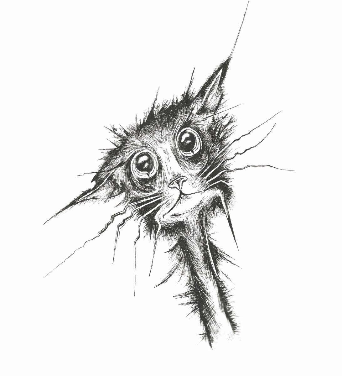 Ever have a day where you feel like this? #anxiety #stress   Get inspired! Follow my hand drawn pen and ink illustrations:   #cat #illustrationartists #illustration #CatsOnTwitter #artist #retweet #WednesdayThoughts #ink @sakuraofamerica @dribbble