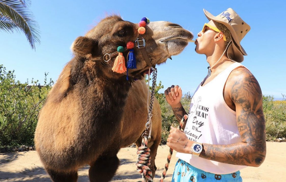 here's kyle kuzma with a camel