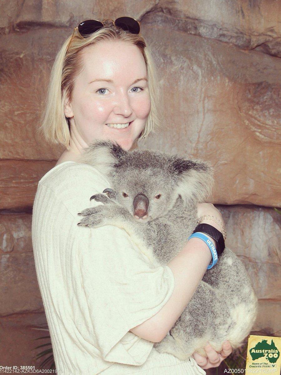 Did you even go to Australia if you didn't get this pic? 🐨🇦🇺 @AustraliaZoo #australia #travelgram https://www.instagram.com/p/B8vULt7DyBj/?igshid=i5pkta3g52av…