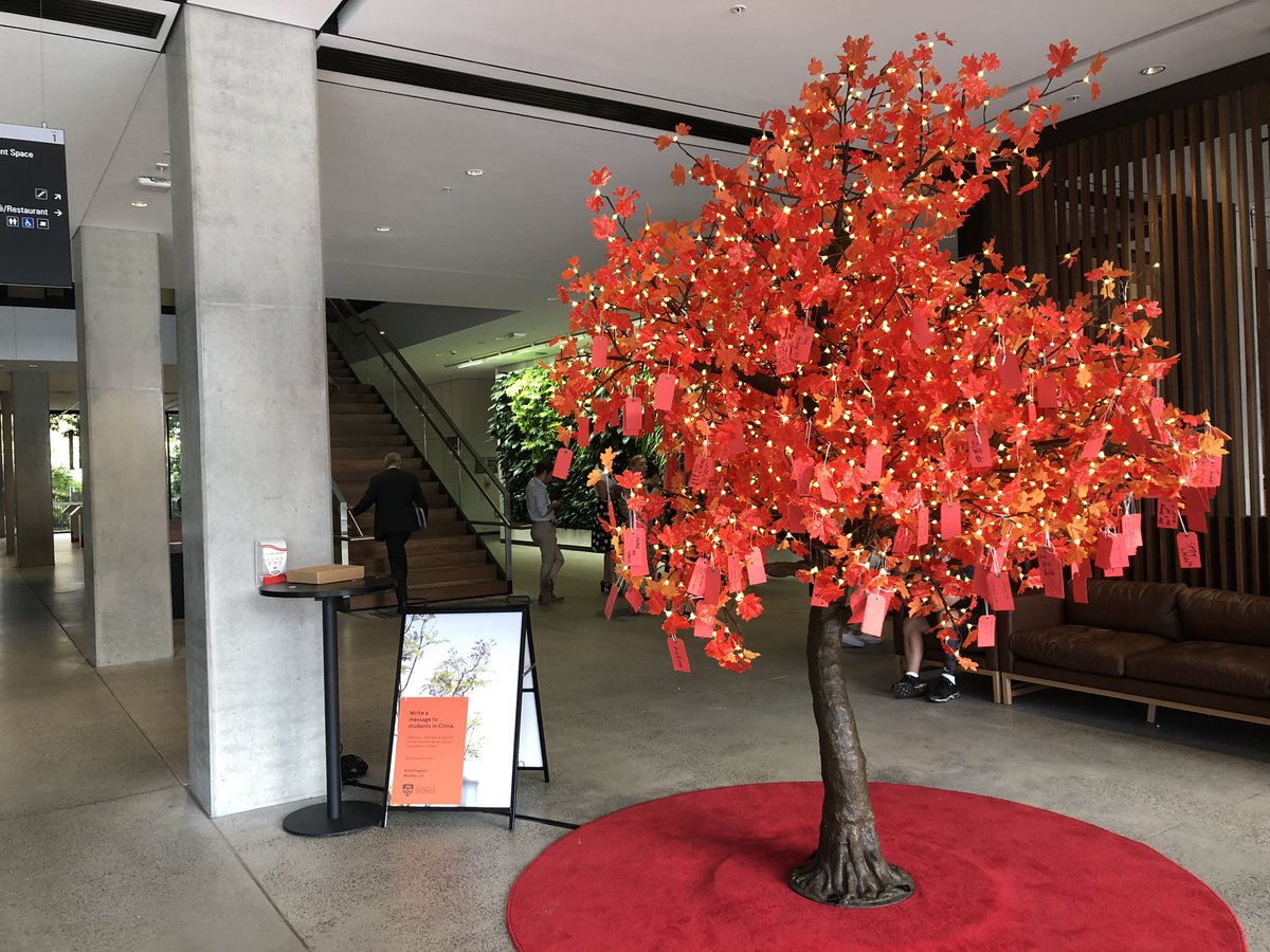 Our Solidarity Tree at @Sydney_Uni, featuring so many kind messages from staff and students to our students in China. Great to see our university community coming together to send our support to those who've been unable to join us yet on campus