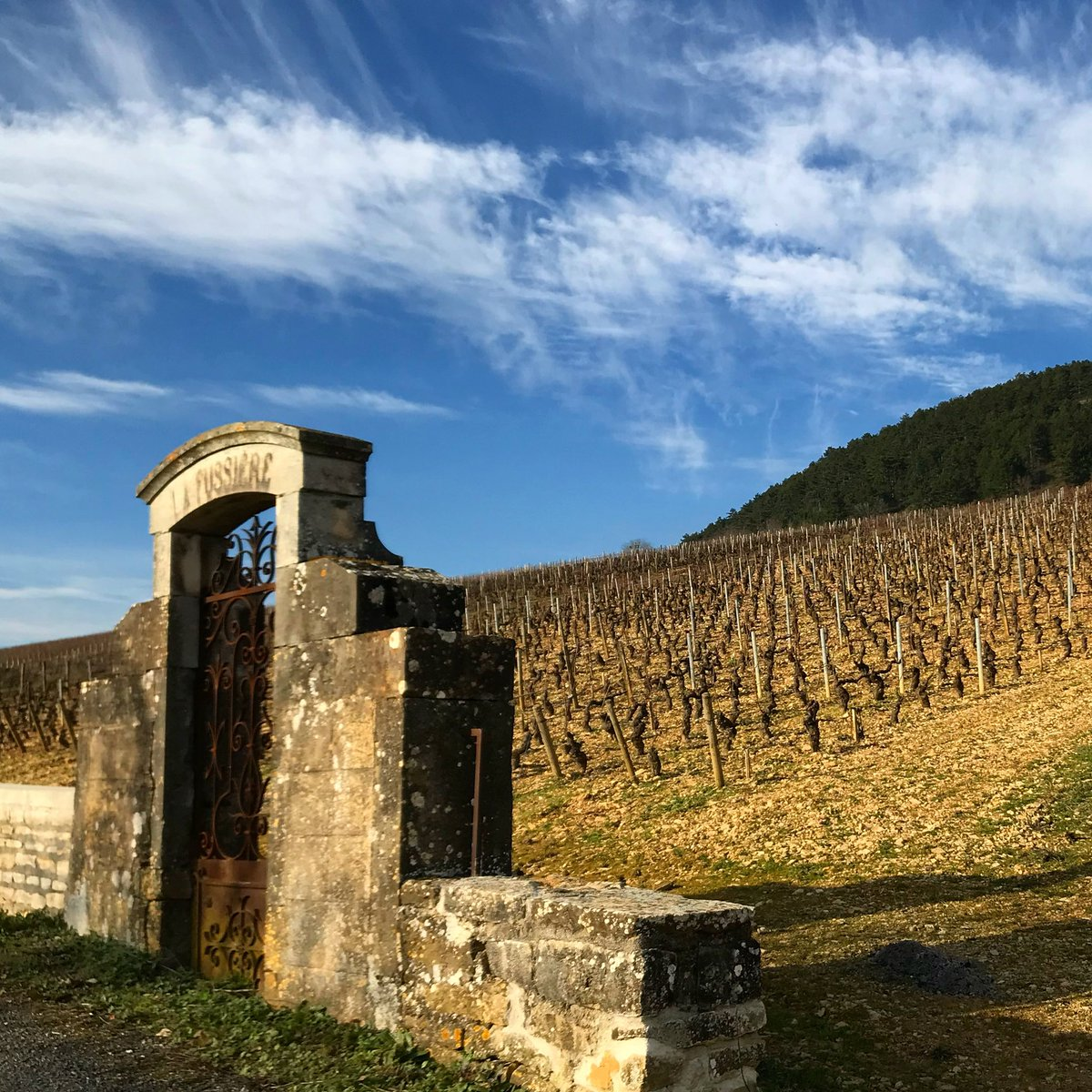 A glorious day in #burgundy in the #maranges in this plot of premier cru vines #lesfussieres where there are often these lovely sky scapes! #burgundy #bourgogne #bourgognefranchecomte #burgundywinetours #winelovers