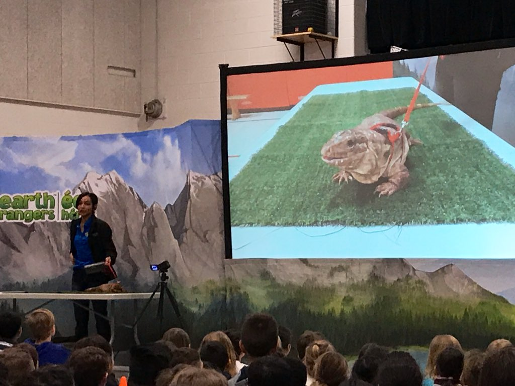 Awesome presentation from Earth Rangers this morning! @StMarkDPCDSB pic.twitter.com/y9tcTmIPYo