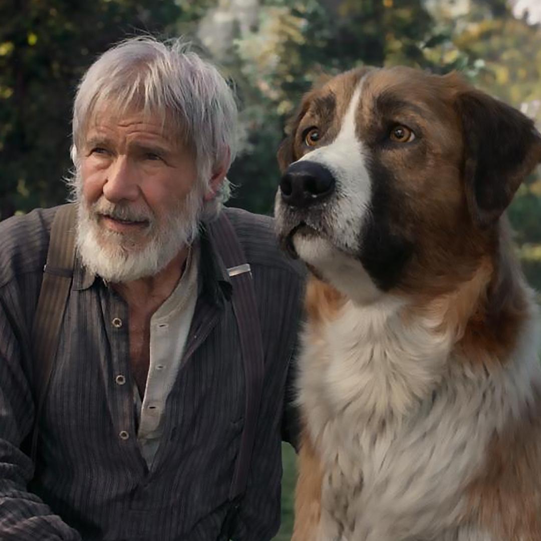 * #Kinotipp * In #RufderWildnis kämpft ein #Schlittenhund ums #Überleben im #Alaska des Goldrauschs. Die #Romanvorlage dazu lieferte der gleichnamige #Klassiker von #JackLondon . Freut euch auf beeindruckende #Landschaftsaufnahmen und spannende #Abenteuer !pic.twitter.com/nhFT7tUYbX