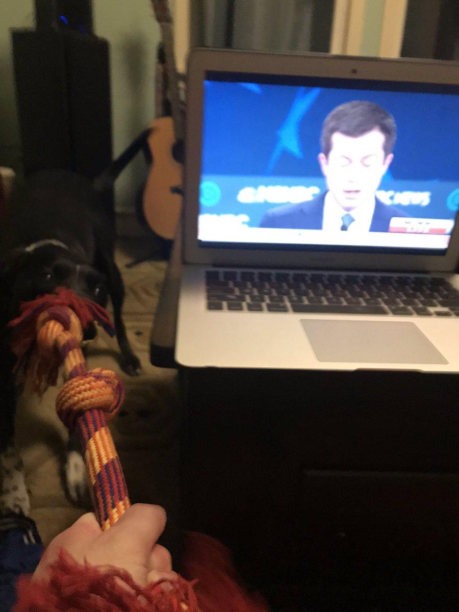@scottdetrow did @PeteButtigieg just say tug-of-war?! #debatedogs #DemDebate