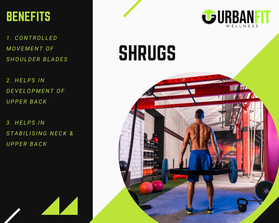 Follow @UrbanfitA for more fitness facts & tips.  The standing dumbbell shrug is a popular movement to build and strengthen the trapezius muscles.   #backworkout #exercise #MuscleGrowth #gymtime #gymlife #FitnessMotivation #FitnessTips #musclefitness #bodybuilding #bodybuilderpic.twitter.com/1pzEQvGIHY