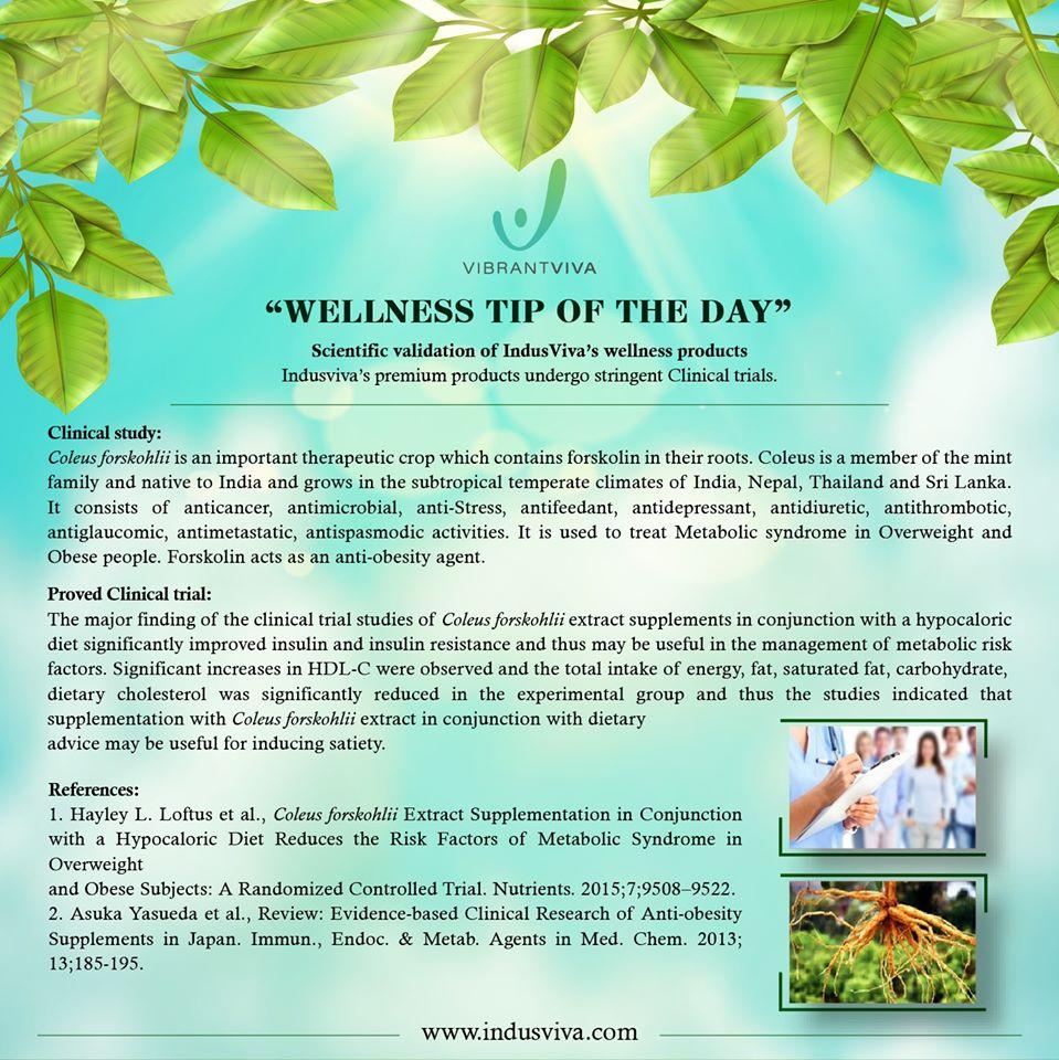 Wellness Tip of the Day   #thursdaythoughts  #wellnesstip  #wellness  #medicinalplants  #herbal  #ayurvedic  #healthytips  #heathytips  #HealthyLiving  #indusviva  #vibrantviva