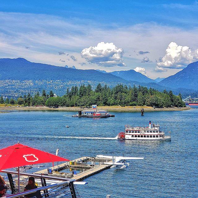 Vancouver View . . . . . #OnePicPerDay #PicOfTheDay #Canada #Vancouver #aroundtheworldpix #flashesofdelight #travelog #mytinyatlas #theglobewanderer #unlimitedcities #downtownvancouver #mustbevancouver #S9PlusPhotographypic.twitter.com/m8JZwUgH7f