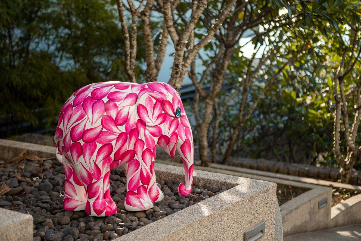 Meet Kata Rocks new colourful residents from @elephant_parade  🌸
