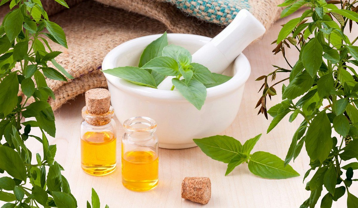 What are herbal extracts and where do they come from?  Find out how some common herbs benefit your health.  https://anzen.co.in/what-are-herbal-extracts/  …  #Pharmaceutical  #herbal  #Extraction  #anzen  #exports  #medicine  #healthcare  #natural  #lavender   #phytochemicals  #garlic  #osteopathy  #naturopathy