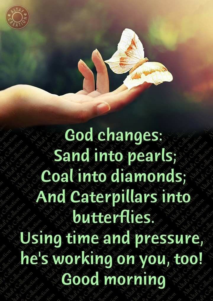 God changes: Sand into Pearls, Coal into Diamonds, And Caterpillars into Butterflies, Using time and pressure,  He's working on you too.  Good morning #friends have a beautiful Thursday! 🌞🌻🌻  #ThursdayThoughts #Growth #success #change