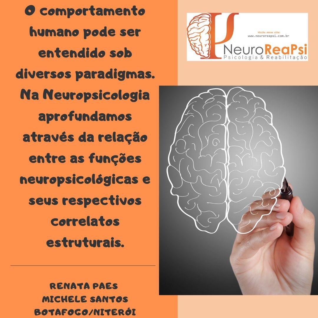 Neuropsicologia e comportamento. #neuropsicologia #funcoescognitivas #neurociencias #cerebro #snc #avaliacaoneuropsicologica #neuroreapsi