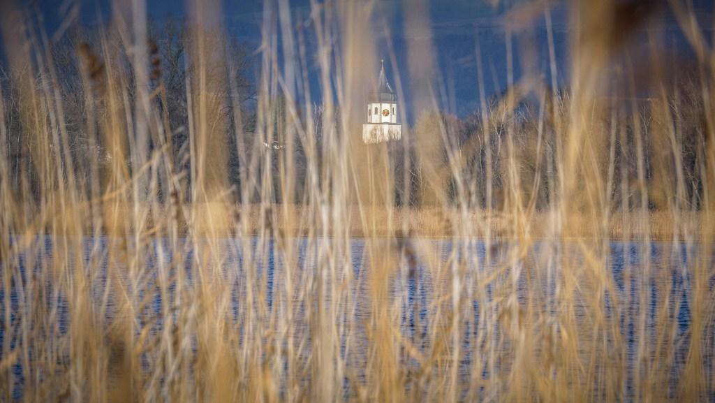 Winterwanderung zur Mettnauspitze Nur im Winterhalbjahr ist der Weg durch den Schilfwald bis zur Mettnauspitze geöffnet. Von dieser kleinen Winterwanderung ein paar Bilder und eine Beschreibung der Route. #Bodensee #Radolfzell https://beersandbeans.ch/2020/02/20/winterwanderung-zur-mettnauspitze/…pic.twitter.com/TeizqnxRO9