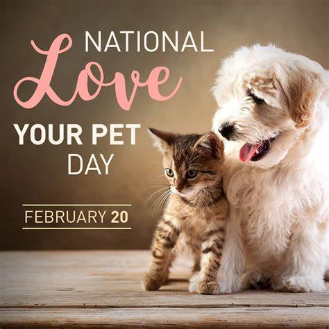 Happy #LoveYourPetDay ! Tell us the name of the #pet you love for a chance to win a free Healthy Solutions for Pets Product! Winner announced 2/21. #dogs #cats #pets #dogsoftwitter #CatsOfTwitter #DogsofTwittter #CatsOnTwitter #dogmom #catmom #petmom #petparent #Thankful<br>http://pic.twitter.com/27JxH0DK6m