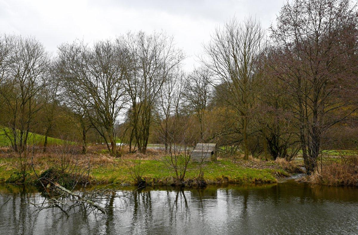#landscape #nature #bos #photography #natuurfotografie #genieten #uitstapje Morbach de pic.twitter.com/Sx43SuVccF
