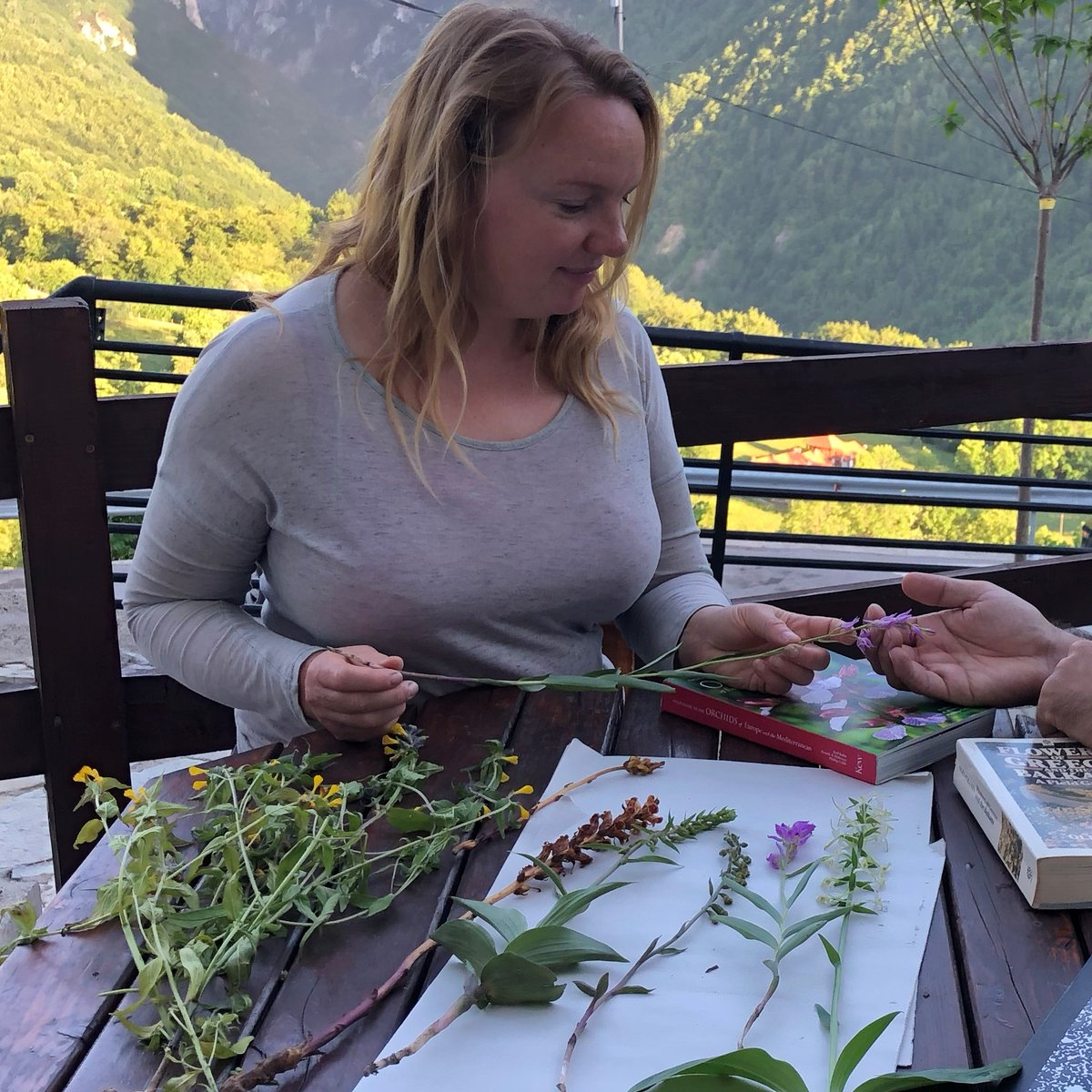Hey @emorycollege Food Health and Society class students! This is the episode I mentioned in class today that covers the science behind edible terrestrial orchids in the Balkans! Check it out! #wildfood #FoodiePharmacology