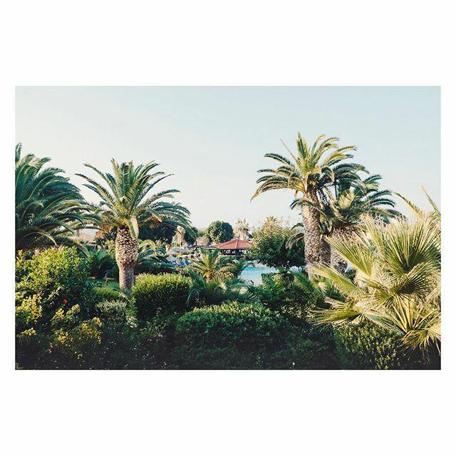 Pool view. [] Heraklion, Greece [] #anissabeach #spicollective #streettogether #streetdreamsmag #fujiframez #lensculture #lensculturestreets #makemoments #gameoftones #theimaged #momentsofmine #visualscollective https://ift.tt/2uZRxGwpic.twitter.com/uM5iTI1eB4