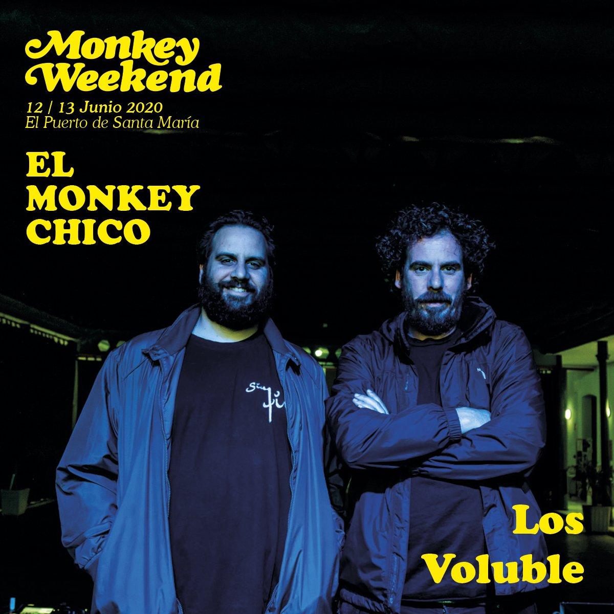 Monkeyweek photo
