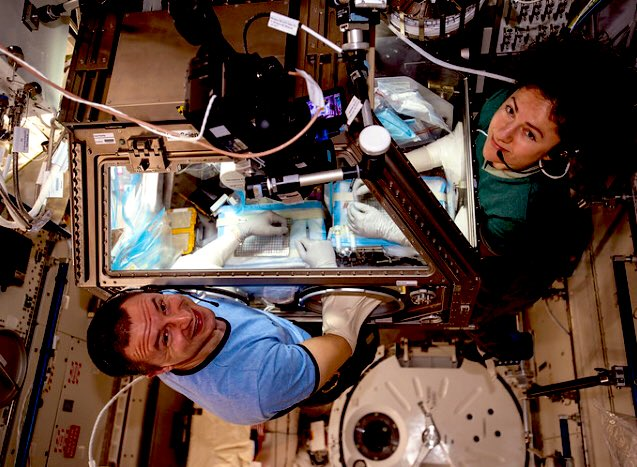 Bone Research and Pilot Studies as Crew Trains for Emergencies. #spaceresearch #healthinspace #ISS https://blogs.nasa.gov/spacestation/2020/02/20/bone-research-and-pilot-studies-as-crew-trains-for-emergencies/ …pic.twitter.com/xRL2opWnsE