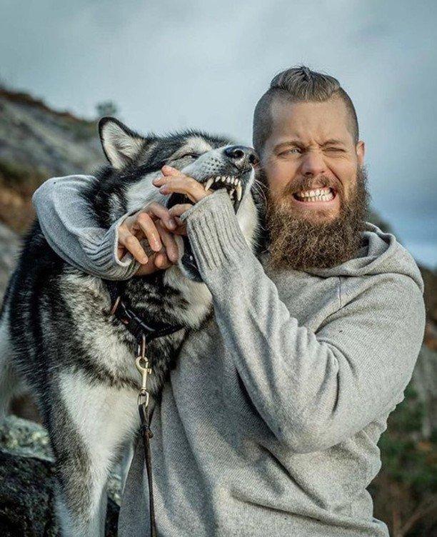 Who else loves these beautiful animals?  to be featured  click Here => https://wolfgurus.com  #wolf #teenwolf #bestwoof #woof #wolfpack #wolves #werewolf #wolfdog #wolfsburg #lonewolf #wolfgang #worldofwolves #babywolf #realwolfdog #wolfmix #wolvesnation #wolfsanctuarypic.twitter.com/WlMiT1eypK