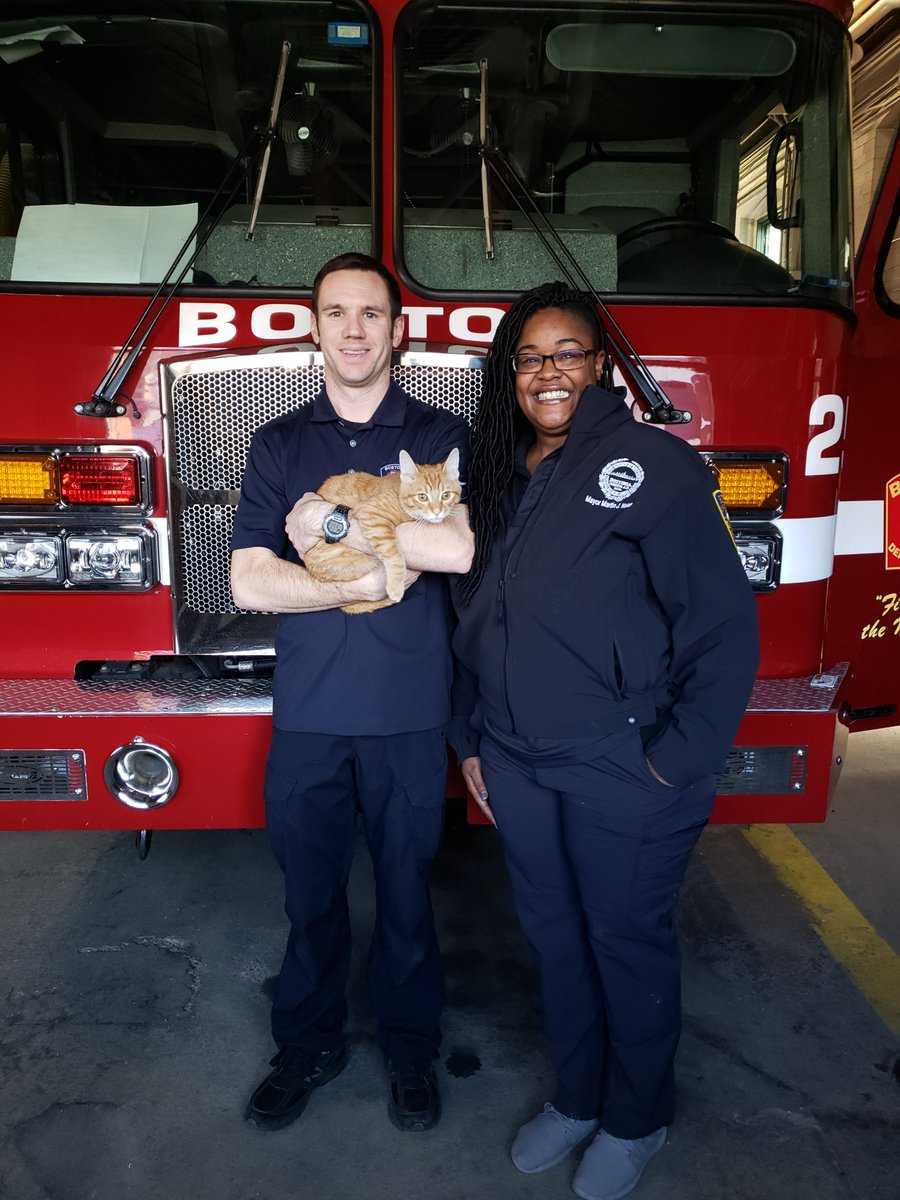 Congrats to @BostonFire Ladder 25 in West Roxbury on their new team member Jake! Jake was adopted earlier this month after being found as a stray in Dorchester, and has adjusted beautifully to life as a firehouse cat.  <br>http://pic.twitter.com/G2NbBWL8CX