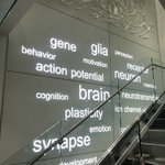 Image for the Tweet beginning: Beautiful tour of @SfNtweets headquarters