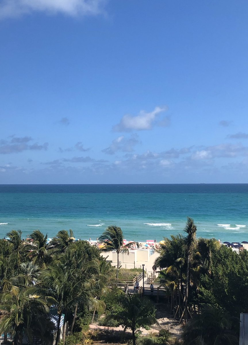 My Miami view. Life is good!