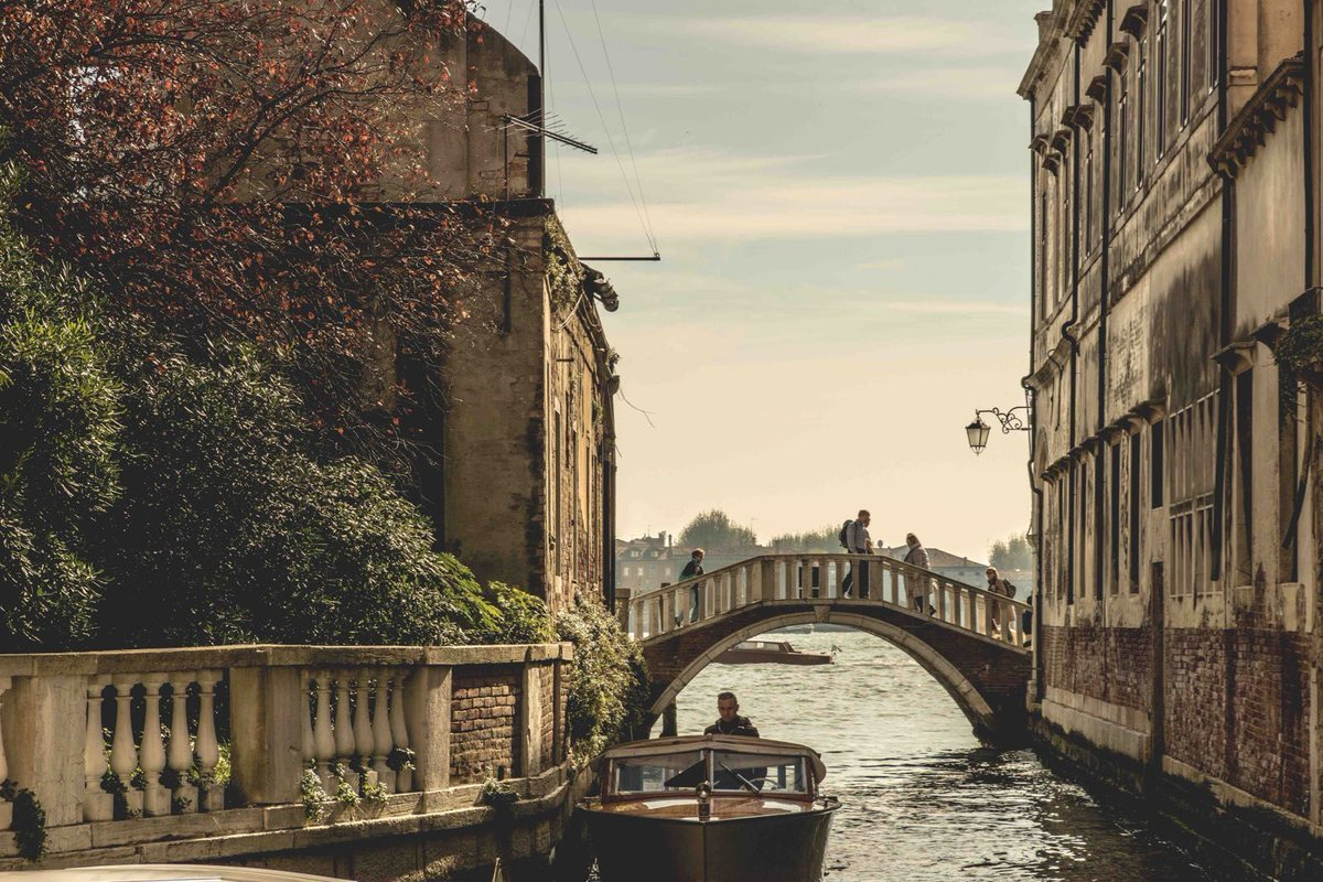 Oh, Venice! Romantic yet stately, calm yet vibrant, there are so many sides to the city. This list of the best descriptions of #Venice in literature will make you fall head over heels with the Floating City - if you haven't already! http://bit.ly/2SHs78F  via @Walks #takewalks