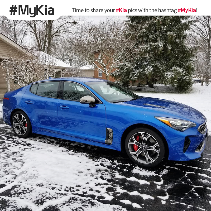 Time to chill. #MyKia #Stinger <Photo courtesy of Instagram user @ micro_gt>
