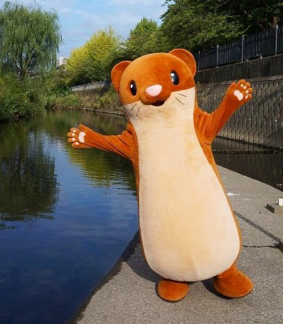 Touch the Weasel is the mascot of the Itachi River area of Yokohama City. <br>http://pic.twitter.com/NewYraAdX2