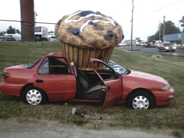 In six words or fewer, write a story about this photo. #sixwordstory #writingcommmunity #NationalMuffinDay