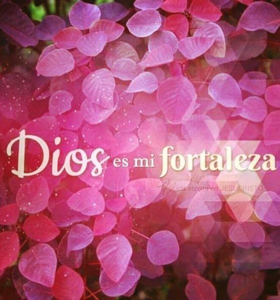 #DIOS #EsMiFORTALEZA #CheloGpic.twitter.com/LjoKS4ubPN