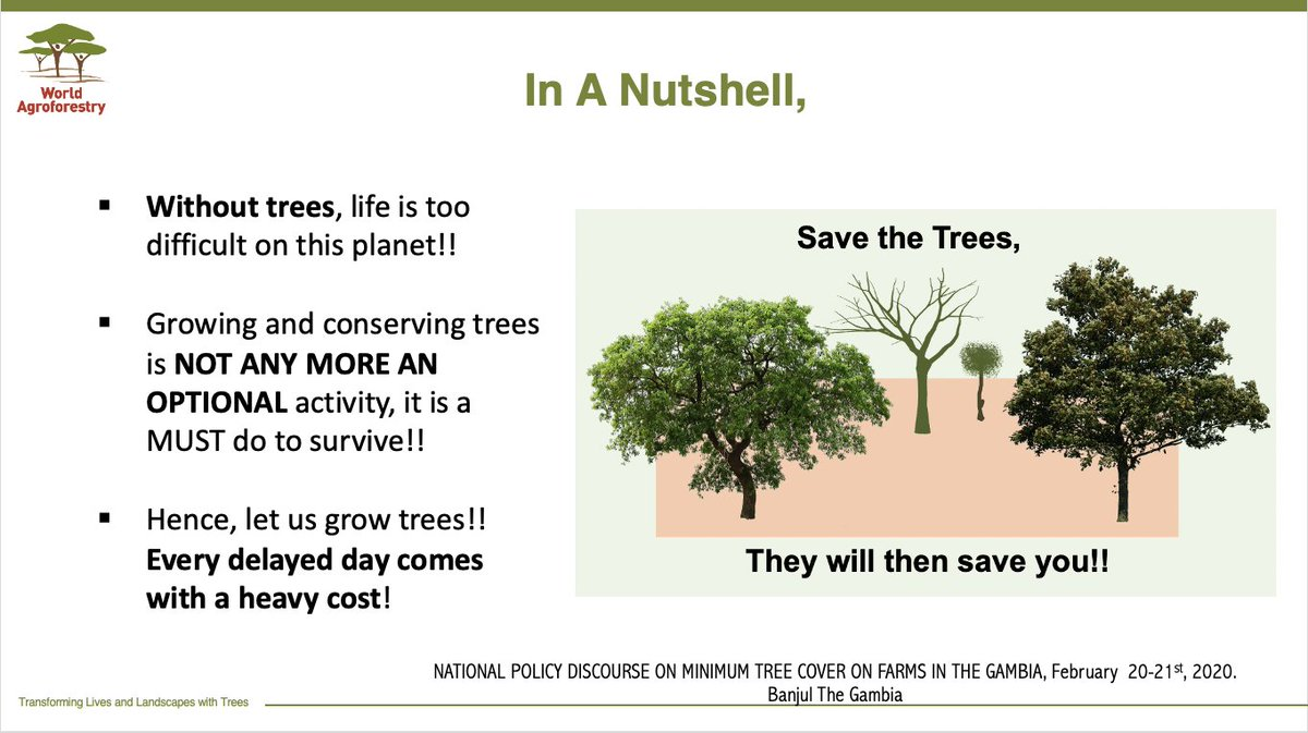 'There is no better day than today, to start planning tree growing. Our life entirely depends on them'. Some key points from my slides at a policy discourse in The Gambia. @ICRAF @CIFOR @EUinTheGambia @ForestsMatter @CWatsonICRAF @WLE_CGIAR @Kennedy @EvergreeningA @QTV_Gambia