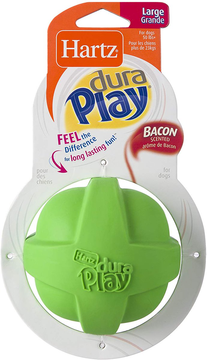 Just saw this on Amazon: Hartz Dura Play Bacon Scented Ball Dog Toy - Large by Hartz for ONLY $1.84!!  via @amazon #pets #dogs #toys #chewtoys #sports #animals #deals #shopping #amazon #bacon #food #fun #parks #excercise #workout #gifts #home #family #cool