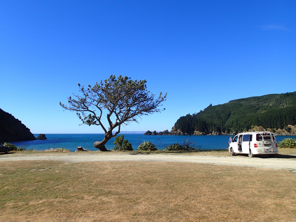 1/5 #newzealand #robinhoodbay A big #thankyou to Ana & Peter Wiles for sharing these wonderful photos with us!  #bilbos1977 #celex #yourpics #yourstory #reallife #memories #bluesky #beach #travelphotos #adventure #camperconversion #camping #vw #roadtrip #bilbosowner